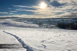 Snowscape Ceredigion