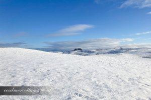 Snow December 2020